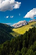 Aperçu iPhone fond d'écranForêt, arbres, montagnes, nuages, ciel bleu, été