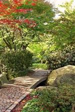 Preview iPhone wallpaper Garden, trees, stones path, autumn