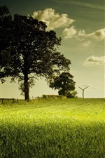 Preview iPhone wallpaper Green field, trees, clouds, windmill