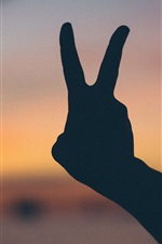 Preview iPhone wallpaper Hand gesture, fingers, dusk