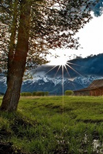Preview iPhone wallpaper House, trees, grass, mountains, clouds, sun rays