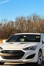 미리보기 iPhone 배경 화면 현대 흰색 자동차 정면보기