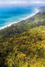 Selvas, floresta, costa, mar azul, nuvens, Costa Rica