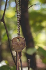 Preview iPhone wallpaper Key, chain, forest