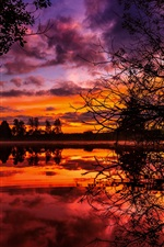 Lake, clouds, trees, twigs, sunset, red sky