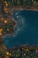 Preview iPhone wallpaper Lake, forest, trees, top view, autumn