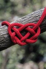 Love hearts rope
