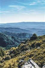 Preview iPhone wallpaper Mountains, forest, trees, top view, sky
