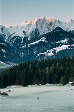 Preview iPhone wallpaper Mountains, peaks, snow, forest, winter