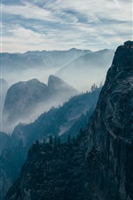Mountains, rock, cliff, trees, fog, morning