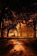 Preview iPhone wallpaper Night, park, trees, lights, dark