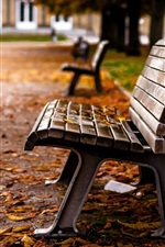 Preview iPhone wallpaper Park, bench, yellow leaves, autumn