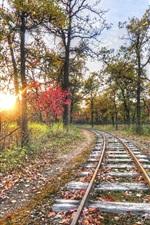 iPhone fondos de pantalla Ferrocarril, pista, árboles, puesta del sol