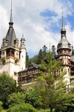 Preview iPhone wallpaper Romania, Peles Castle
