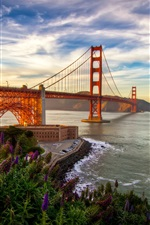 Preview iPhone wallpaper San Francisco, bridge, sea, California, USA