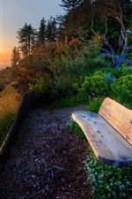 Preview iPhone wallpaper Sea, coast, slope, grass, trees, bench, sunset