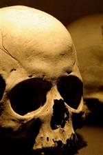 Preview iPhone wallpaper Skull, bones