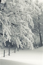 Preview iPhone wallpaper Snow, trees, winter, white world