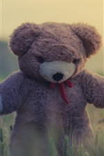 Preview iPhone wallpaper Toy, teddy bear, grass