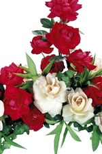 Preview iPhone wallpaper White and red roses, white background