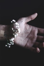 White flowers, hand, black background