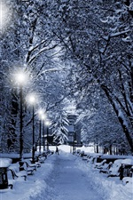 Preview iPhone wallpaper Winter, trees, thick snow, lamp, path