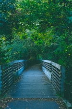 Preview iPhone wallpaper Wood bridge, path, trees, park