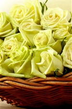 Preview iPhone wallpaper Yellow roses, basket
