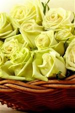 Yellow roses, basket