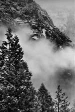 Preview iPhone wallpaper Yosemite National Park, USA, trees, mountains, snow, fog, winter