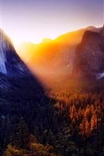 Yosemite beautiful nature landscape, trees, mountains, sunset, USA