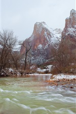 Preview iPhone wallpaper Zion National Park, mountains, river, snow, trees, winter, USA