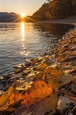 Preview iPhone wallpaper Altai Nature Reserve, Lake Teletskoye, yellow leaves, autumn, sunset, Russia