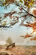 Preview iPhone wallpaper Autumn, trees, red leaves, bench, fog