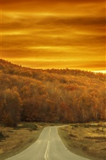 Preview iPhone wallpaper Autumn, trees, road, red sky, sunset