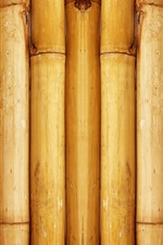 Preview iPhone wallpaper Bamboo background