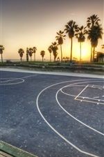 Basketball playground, palm trees, sunset