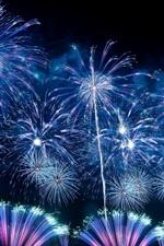 Belas fogos de artifício, noite, fundo preto