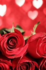 Preview iPhone wallpaper Beautiful red roses, love heart background