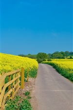 Preview iPhone wallpaper Beautiful yellow rapeseed field, fence, blue sky