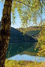 iPhone fondos de pantalla Bélgica, lago, árboles, otoño