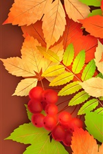 Berries, yellow leaves, autumn, vector picture