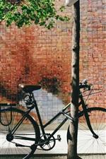 Bike, street, wall
