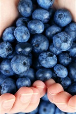 Preview iPhone wallpaper Blueberries in hands
