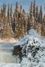 Preview iPhone wallpaper Canada, Manitoba, Pisew Falls, trees, snow, winter