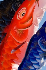 Preview iPhone wallpaper Carp, lanterns, Japanese culture