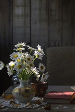 Preview iPhone wallpaper Chamomile flowers, books, lamp, still life