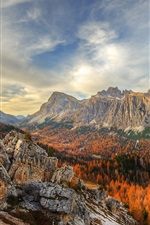 Preview iPhone wallpaper Cinque Torri, Dolomites, Italy, beautiful autumn landscape, mountains, trees