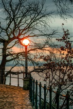 Croatia, Opatija, trees, lantern, bay, evening