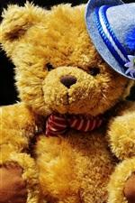 Cute teddy bear, blue hat